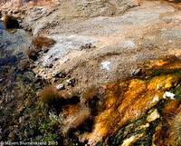 Yellowstone--Stained Soil